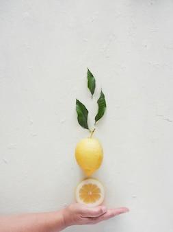 女性の手は不可能な構成でレモンのスライスを持っているようです