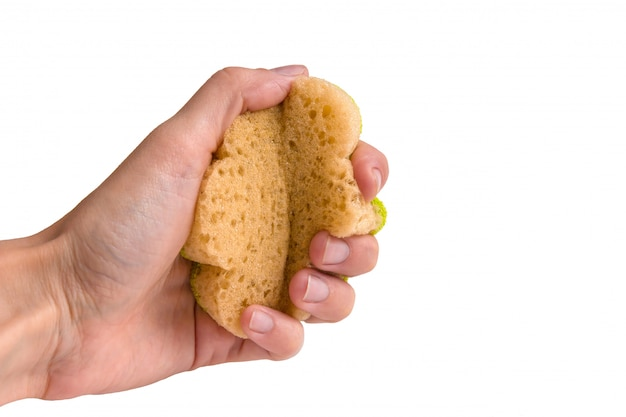 Female hand squeezes a sponge for washing dishes.