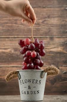 金属製のバケツから赤ブドウのクラスターを取る女性の手。