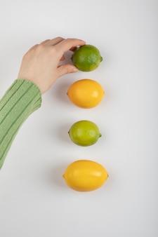 화이트에 구연 과일에서 라임을 복용 하는 여성 손.