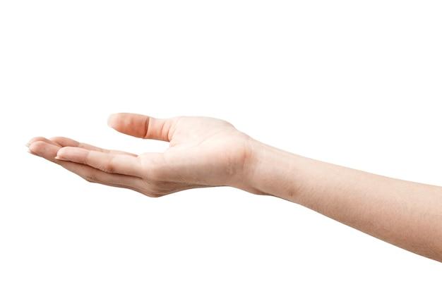 Female hand on white