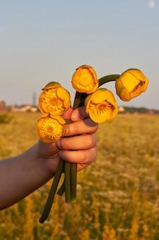 黄色いチューリップの花の花束を持つ女性の手。クローズアップの垂直ショット。