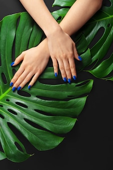 Female hand with classic blue color nails manicure on monstera leaf. creative photo