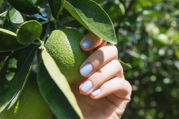 緑の葉を保持しているキラキラのネイルデザインと女性の手。