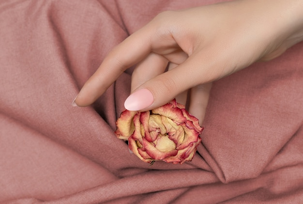 Female hand with pale orange nail design holding an orange autumn rose on fabric surface.