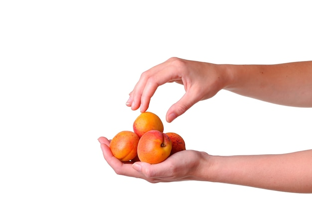 Female hand with tasty apricot on white background. cream for hands and treatment or organic healthy food idea and concept