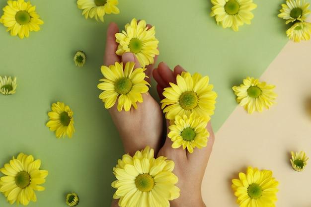 Женские руки и хризантемы на двухцветном фоне.