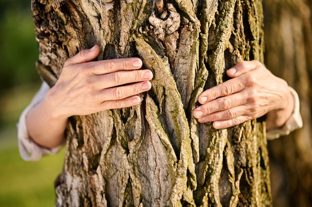 Female hands embracing tree in park