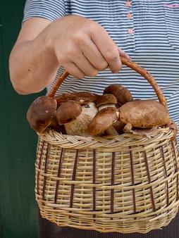 Женские руки держат корзину с грибами.