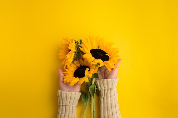 여성의 손은 노란색 배경에 아름다운 신선한 해바라기 꽃다발을 들고 있습니다