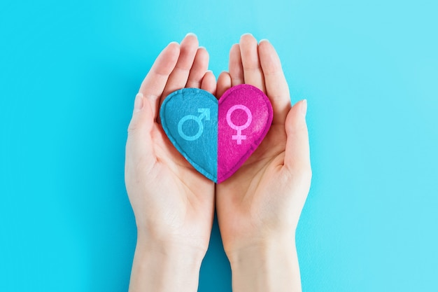 Female hands hold a heart with a male and female symbol on a blue background, copy space. girl or boy, concept of childbearing. pregnancy twins concept