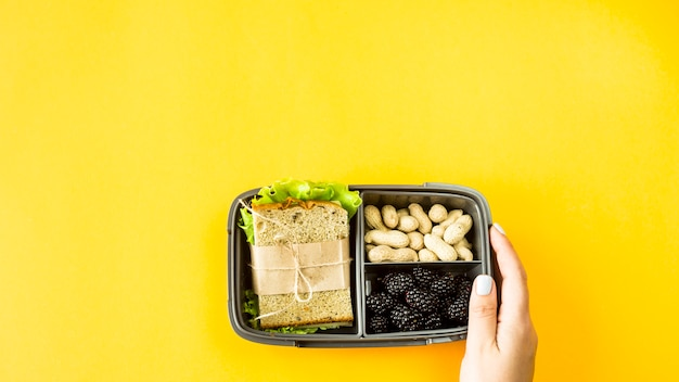 Female hands hold lunchbox with food