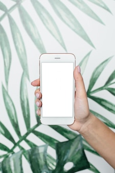 Female hands hold mobile phone with white screen on leaves