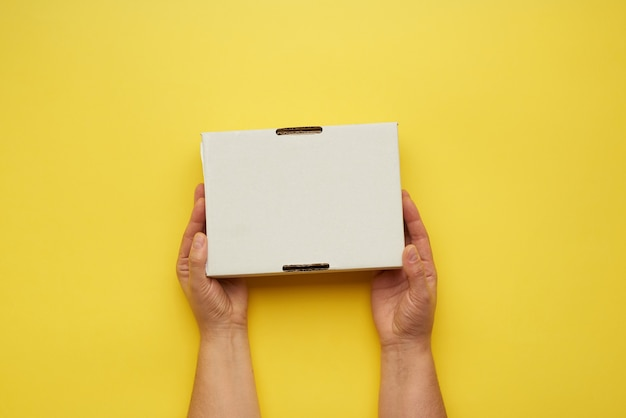 Female hands holding closed paper box
