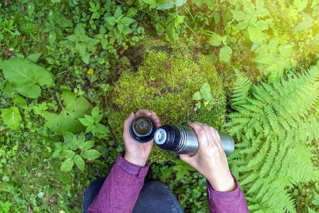 Женские руки, держа термос из нержавеющей стали с чайным напитком на пне в хвойном лесу