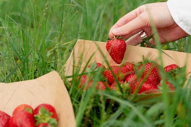 푸른 잔디 배경에 딸기를 들고 여성 손