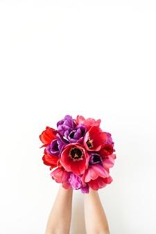 白い背景の上のチューリップの花の花束を保持している女性の手。