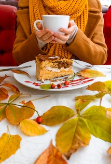 Female hands holding the white plate with cake