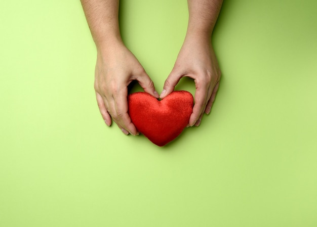 Female hands holds red textile heart on green