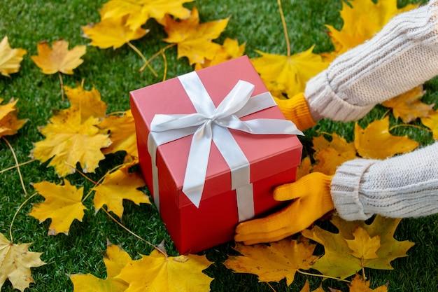 Женские руки в варежках держат большой красный подарок на зеленой траве вместе с кленовыми листьями