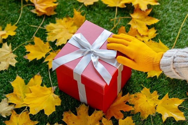 ミトンの女性の手は、カエデの葉と一緒に緑の草に大きな赤い贈り物を保持します