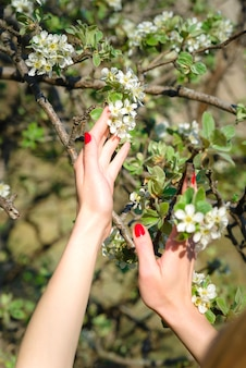 화창한 날 꽃이 만발한 봄 정원의 배경에 여성 손