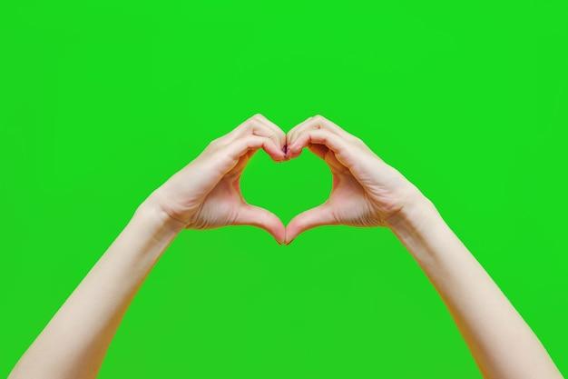 色の緑の背景に分離されたハートの形を示す女性の手は、調和の慈善を愛します