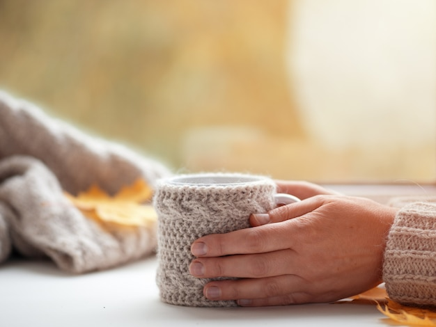 Female hands in a sweater holding a cup of coffee on the autumn window in the house