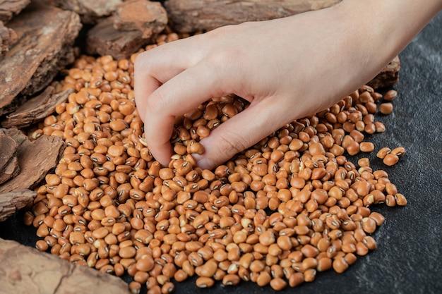 小豆の束を取る女性の手。