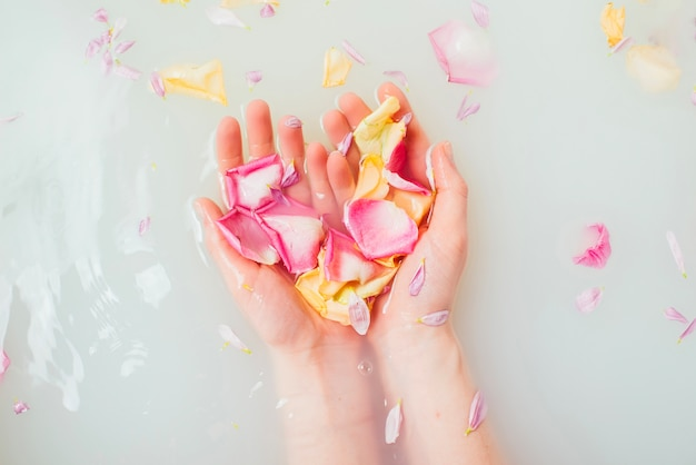 Female hands in water holding petals