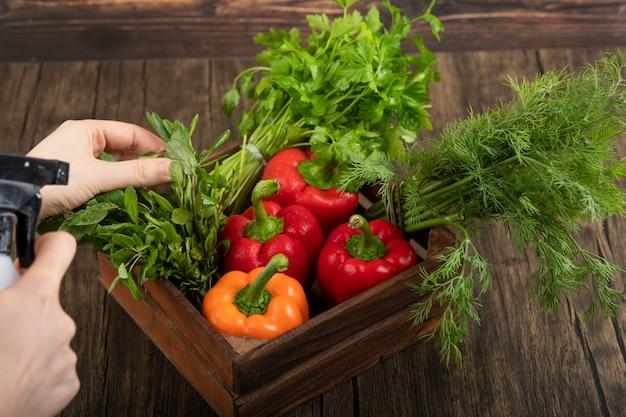 Женские руки поливают свежие овощи на деревянной поверхности