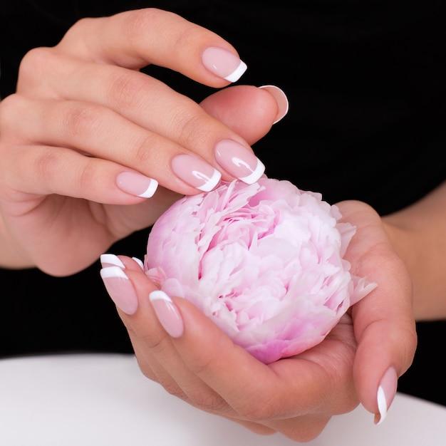 牡丹を保持しているフランスのマニキュアの爪を持つ女性の手
