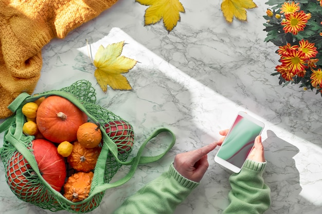 Female hands with mobile phone, orange pumpkins in mesh bag or string bag. top view on the pot of hrysantemum flowers, yellow autumn leaves and wool sweater