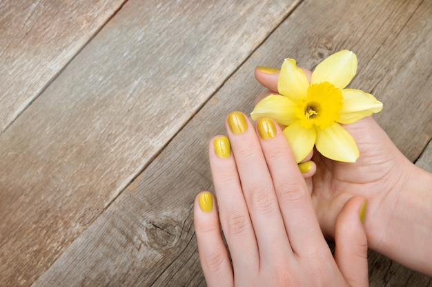 Female hands with yellow glitter manicure holding narcissus flower.