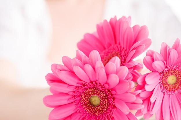 Female healthcare concept, hand hold pink floower gerbera