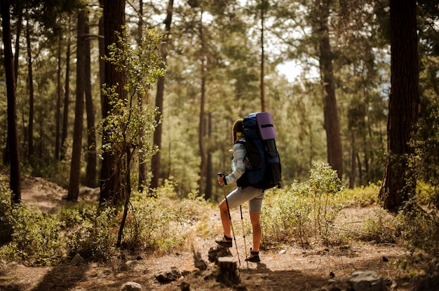 Female hiker travels with sticks through forest