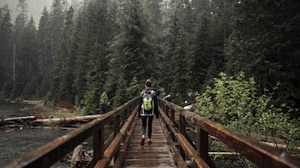 Female hiker walking on the wooden bridge leading toward forest