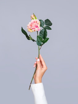 Female holding romantic rose