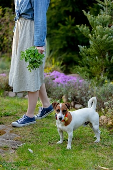 Самка держит свеклу возле собаки в саду весной