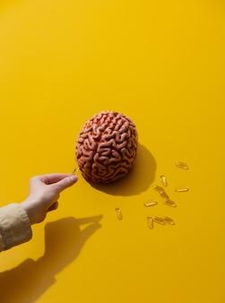 Женщина держит таблетки возле мозга на желтой поверхности