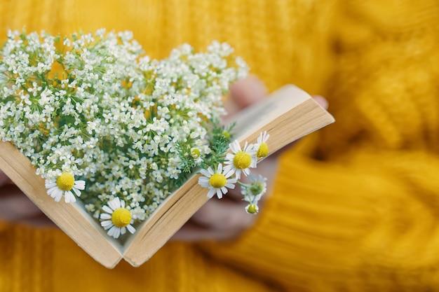 ニットセーターの女性は、ロマンスのオープンブックの概念で野生の花のオブジェクトの花束と女性の手の中にデイジーと本を保持します