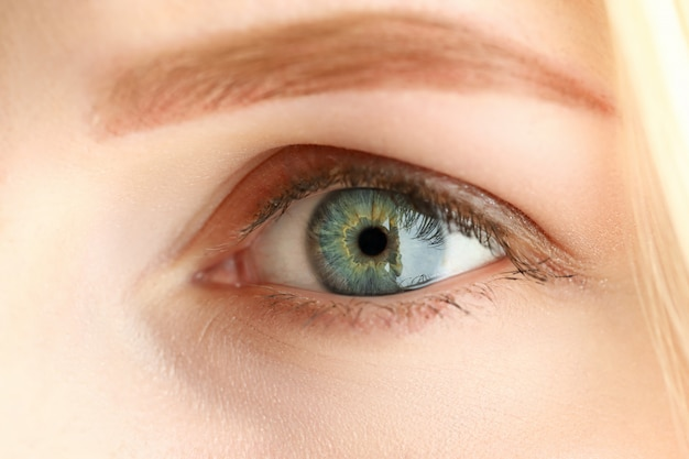 Самка левого серо-зеленого цвета удивительного глаза