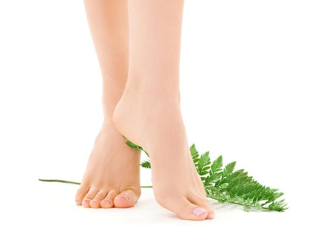 흰색 위에 녹색 잎을 가진 여성 다리