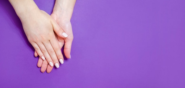 Female manicure on a bright background. purple background. banner.