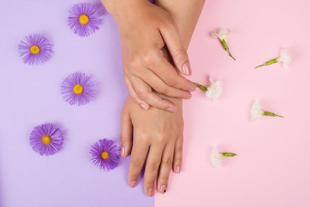 女性のマニキュア。手と爪のケア。美しい若い女性の手
