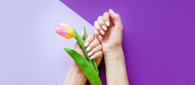 밝은 배경에 여성 매니큐어. 꽃과 보라색 배경입니다. 배너.