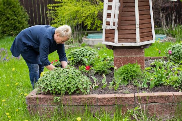 Садовница средних лет сажает цветы на декоративной клумбе с ветряной мельницей среди зеленой сельской местности