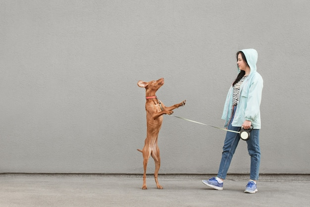 Female owner trains his dog on the street and holds on a leash, the dog jumps.