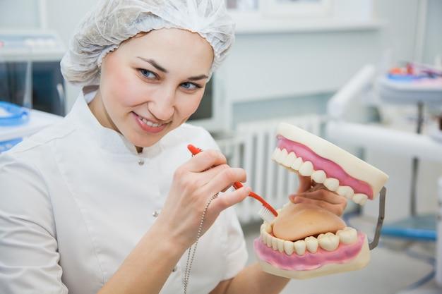 여성 전문 치과 의사는 턱 모델에 치아 위생을 보여줍니다. 임상 사무실에서 stomatologist 및 환자. toothcare 개념