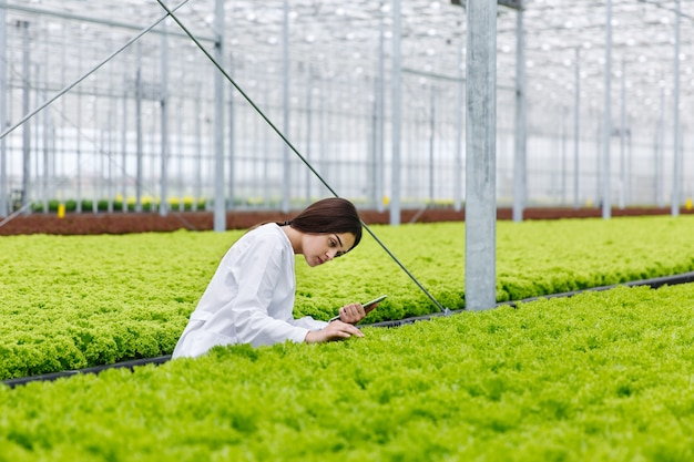 Female researcher holds a tablet studying plants in the greeenhouse